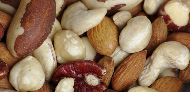 Geschiedenis van noten