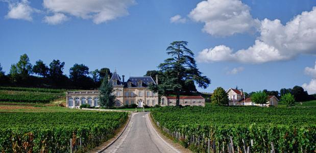 geschiedenis wijnhuizen
