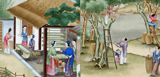 Productie van zijdestof in China