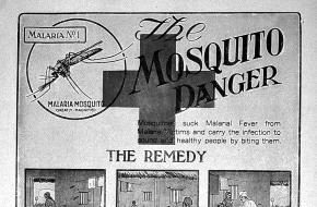 Poster behandeling malaria