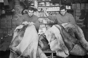 Britse officieren maken slaapzakken op de expeditie naar Antarctica 1910 - 1913 (Wikimedia Commons)