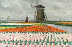 Holland Mania George Hitchcock roze tulpen molen