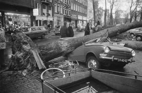 omgewaaide boom aan Elandsgracht op autos  Datum 3 januari 1976