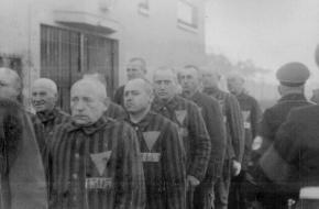 Homoseksuele gevangenen Sachsenhausen