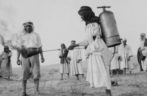 sprinkhanenplaag 1915