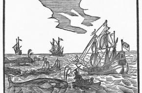 Noordse Compagnie