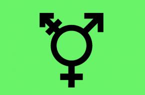 geschiedenis van transgender
